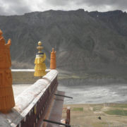 SpitiValley-4