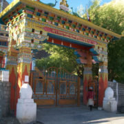 SpitiValley-8